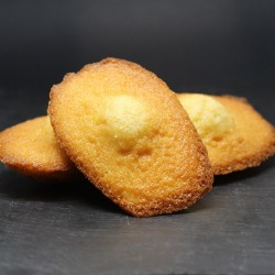 Madeleines - Le Petit Biscuitier